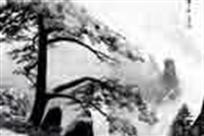 四季黄山国际摄影大展