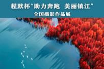 镇江全国摄影作品展