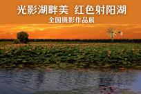 射阳湖全国摄影作品展