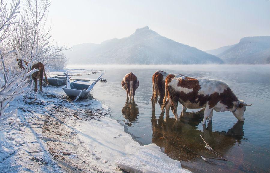 冬日风景线 汪永超摄