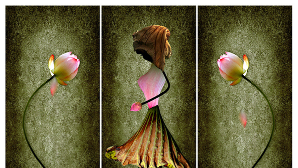 《花仙子》作者:蔡金龙