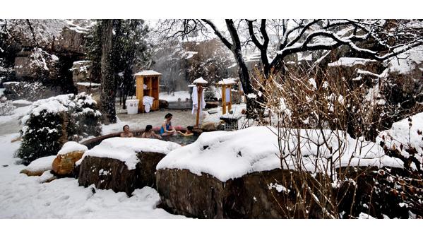 《温泉冬浴》作者:王建成