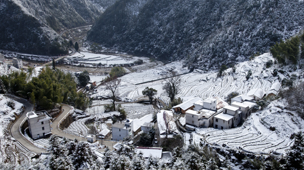 雪域山村--潘金
