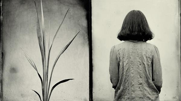 《禾声》(组照之一)作者:陈吉楠