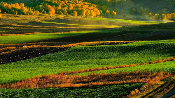 《秋染山野》 黄天继 摄