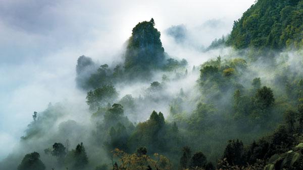 雾锁奇峰 樊孝海 摄