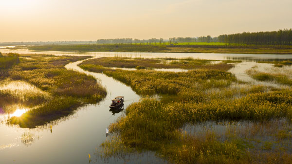 湿地如画 朱红 摄