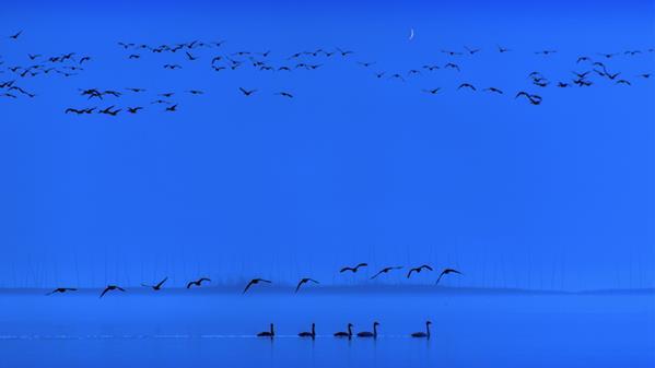 夜色湖畔 黄慧 摄