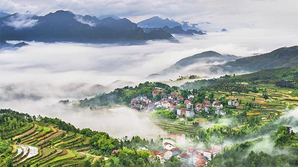 《美丽乡村》-严笑跃 摄