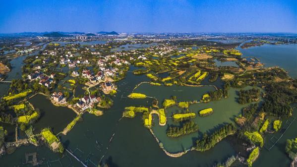 下渚湖湿地  吴海平  摄