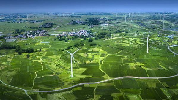 绿能·秀美·乡野 张永才 摄
