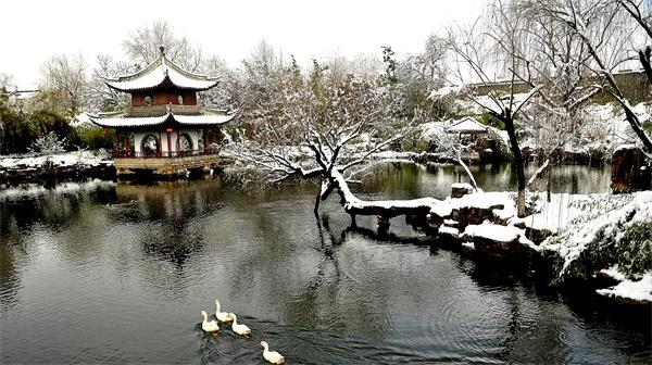 水绘冬韵 王海龙  摄