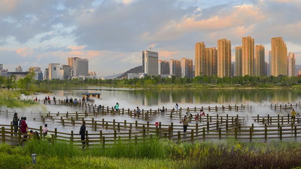 生态龙津湖 郑献兴摄