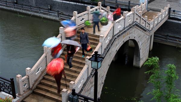 水乡春雨 顾强 摄
