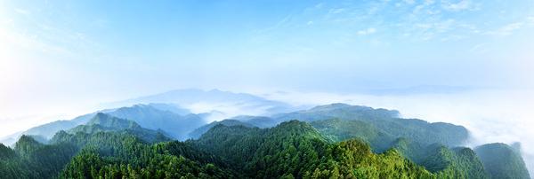 排牙山林场生态-李宗阳