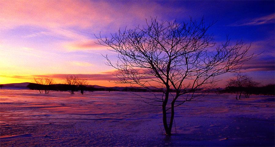 【润艺摄影】冬日冰雪坝上、奔马冰雪风光摄影创作团
