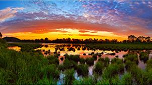 """避暑""""打鸟""""好去处——黑龙江省双鸭山市饶河乌苏里江国家湿地公园"""