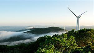 杜鹃圣山——黑龙江省穆棱市大顶子山森林公园