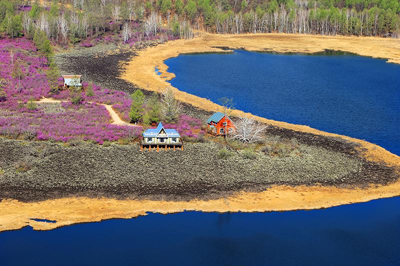 内蒙古呼伦贝尔达尔滨湖国家森林公园