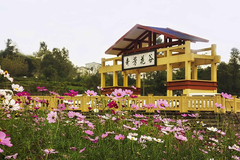 重庆市万州区奇芳花谷景区