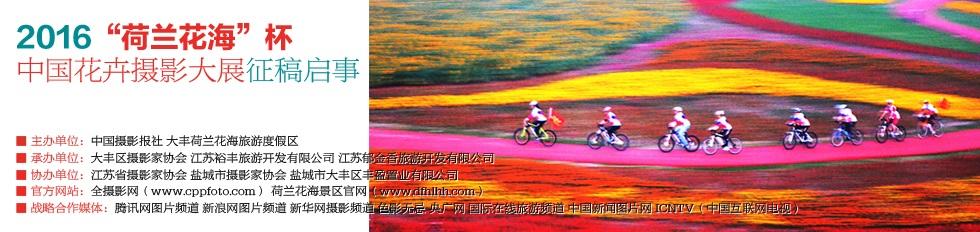 """""""荷兰花海""""杯中国花卉摄影大展"""