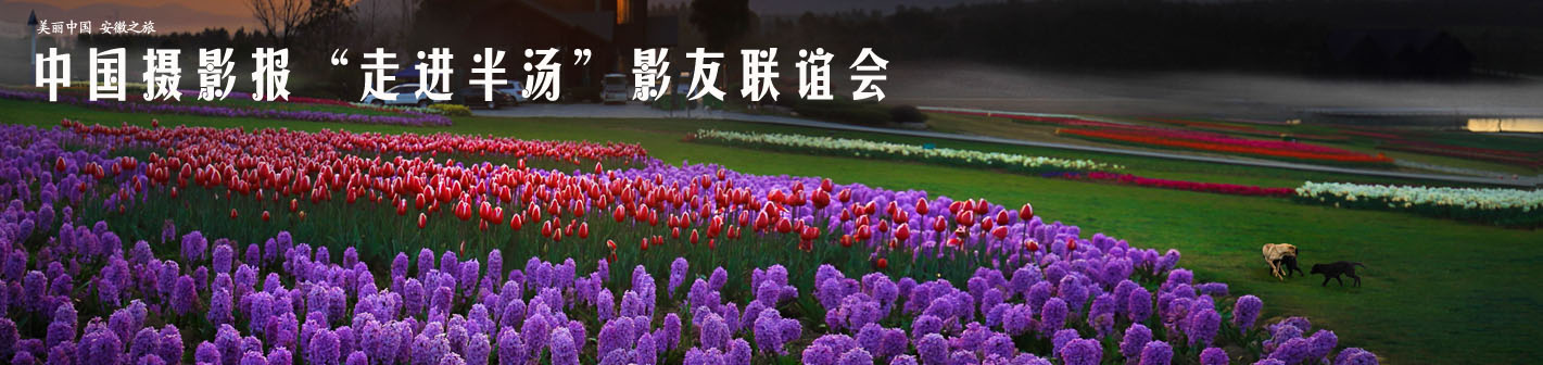 """中国摄影报""""走进半汤""""影友联谊会"""