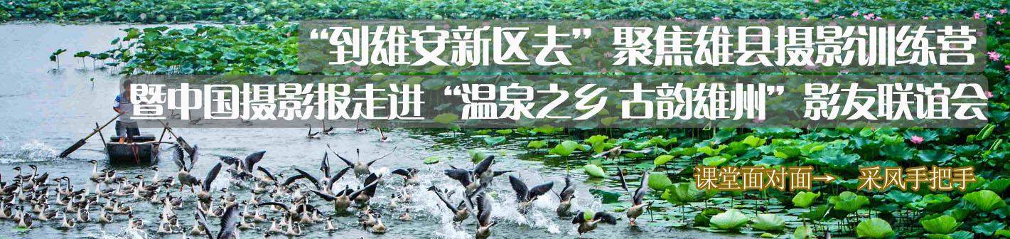 聚焦雄县摄影训练营暨雄县影友联谊会