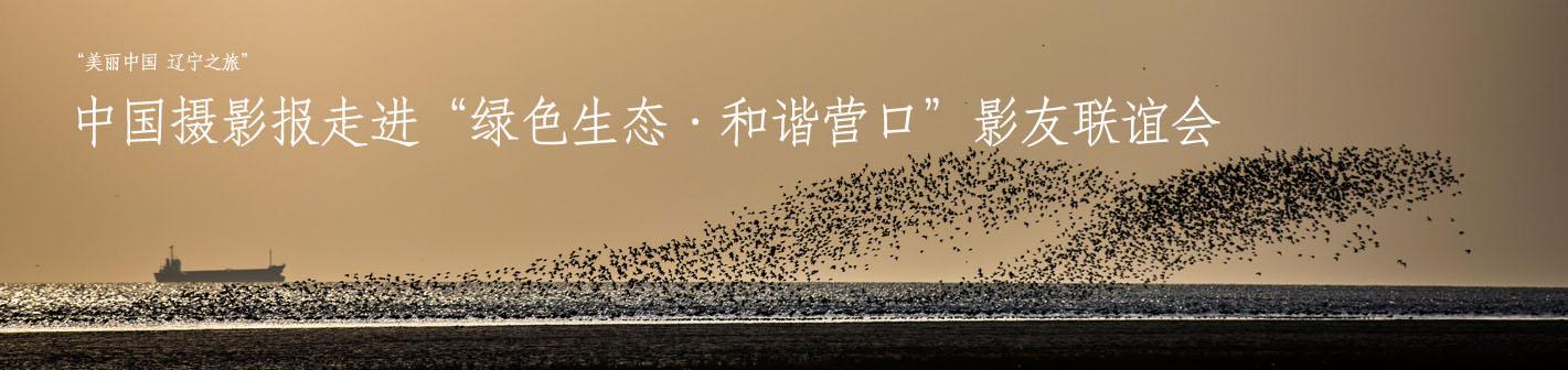 """中国摄影报走进""""绿色生态·和谐营口""""影友联谊会"""