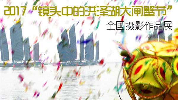 2017洪泽湖全国摄影作品展
