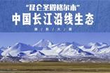 格尔木中国长江沿线生态摄影大展