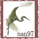 nan97