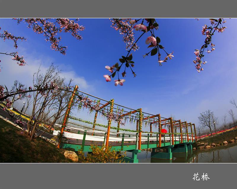 花桥  拍摄地点: 大丰  拍摄时间: 2015-03-07  作品       淮安烟斗