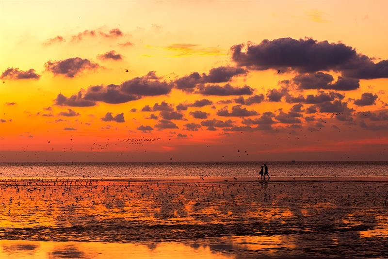 作品描述: 2016年8月24日晨,江苏盐城滩涂,一对恋人正在海边拾贝