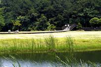 美丽的木兰草原二