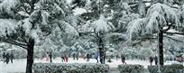 公园雪霁图