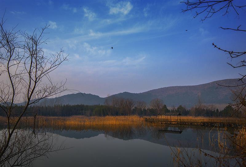 作品名称: 《静,净,境》  作品描述:   拍摄地点: 安徽宿州夹沟镇五柳