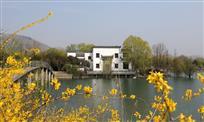 宿州五柳仙境(2)