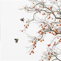 《秋果满枝》