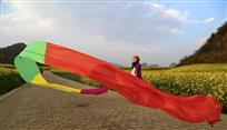 《花海飘红》