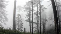 雾罩瓦屋山