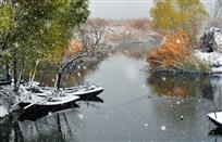 《舟泊淀飘雪》