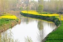 春到大运河