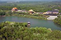 森林,湖泊,好景观