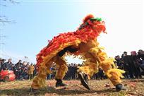 《田间地头狮子舞》