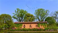 闻香寻酒杏花村
