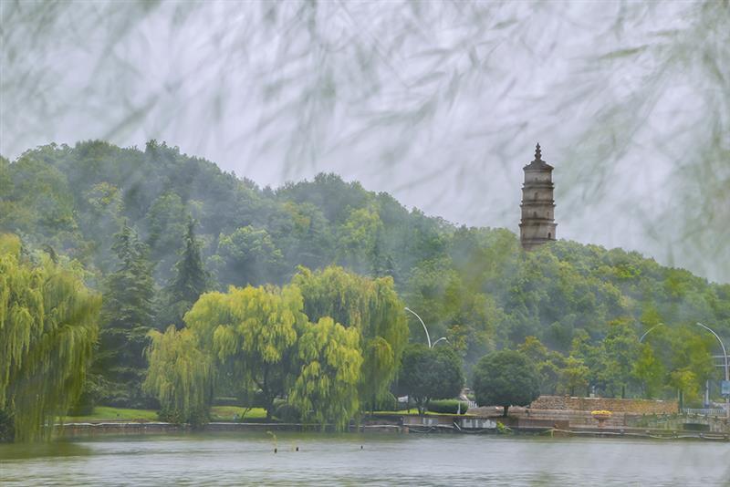 上一页 下一页 作品名称: 烟雨百荷塔  作品描述: 风雨吹打着公园的