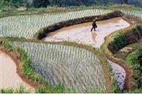 水是农业的命脉