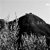 茱萸峰的春天