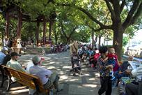 社区公园一角