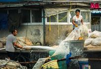 渔家洗刷刷